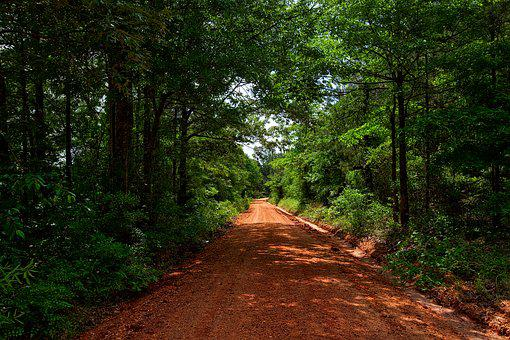 Alabama, Dirt Road, Red Clay, Landscape, Forest, Trees
