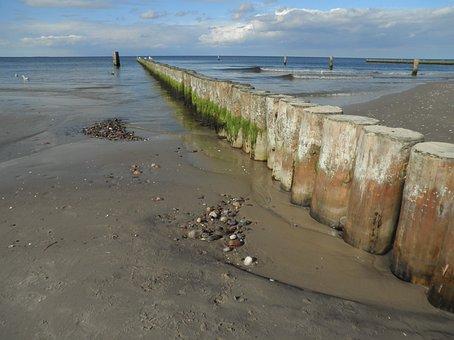 Groynes, Baltic Sea, Shallow Water, Overgrown Algae