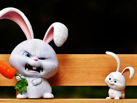 Hare, Evil, Bank, Snowball, Film Character, Pets, Funny