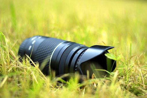 Photographer, Nature, Photography, Camera, Lens