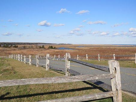 Fall, Ocean, Truro, Cape Cod, Fence, Road, Fencing