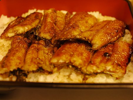 Eel, Broiled Eel, Food