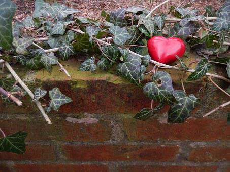 Heart, Wall, Ivy, Loss, Pain, Mourning, Love, Romance