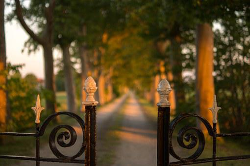 Fence, Road, Landscape, Countryside, Rural, Lane, Trees