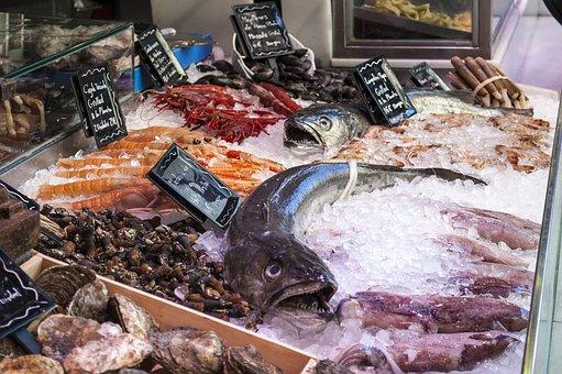 Fish Shop, Fish, Seafood, Ice, Market