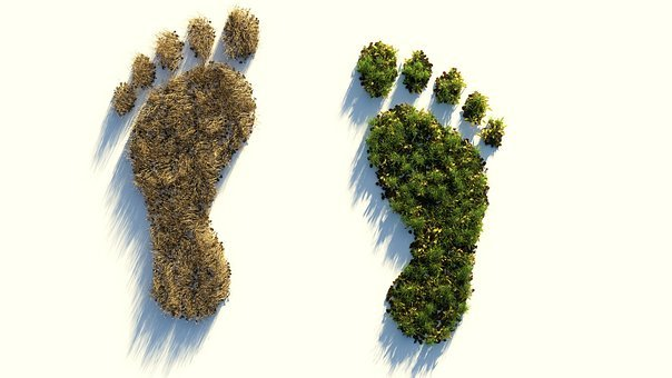 Ecological Footprint, Climate Protection