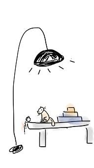 Kitten, Coffee, Spilt Coffee, Lamp