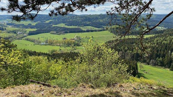 Sheep Mountain, Animal In Gene, Sky, Landscape