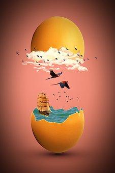 Egg, Broken, Eggshell, Hen's Egg, Open, Water, Wave