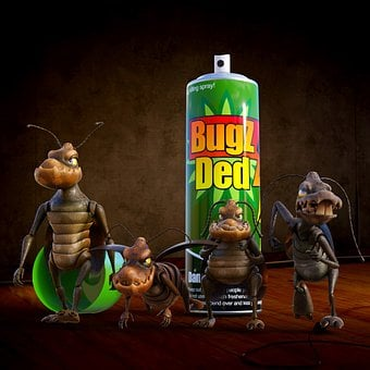 Cockroaches, Vermin, Pest, Insect