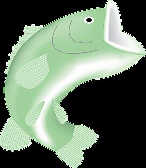 Bigmouth, Fish, Big, Mouth, Fishing, River, Bass