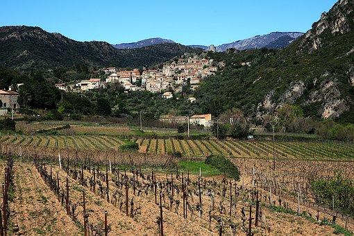 Nature, Landscape, Mountain, Vine, France, South