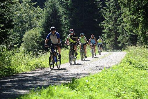 Cycling, Cyclists, Lipno, Lipensko, šumava, Summer