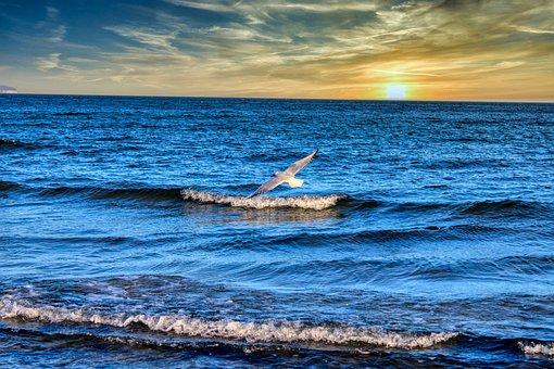 Baltic Sea, Nature, Rügen, Sea, Water, Coast, Sky
