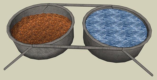 Water Dish, Dog Food Dish, Bowl, Dish, Dog, Dog Food