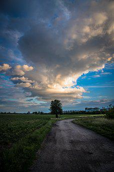 Cloud, Storm, Tree, Path, The Sky, Weather, Country