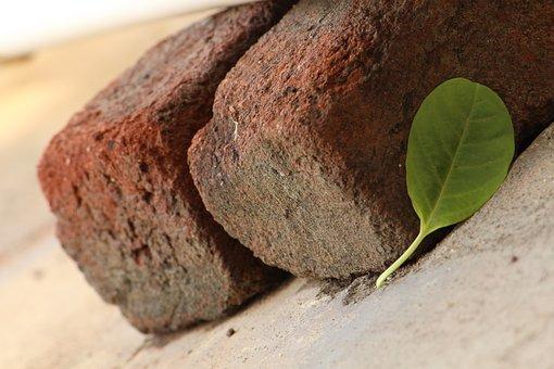 Bricks, Leaf, Background, Slide, Nature