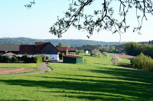 Funnel Cake, Lorch, Ostalbkreis, Welzheimer Forest
