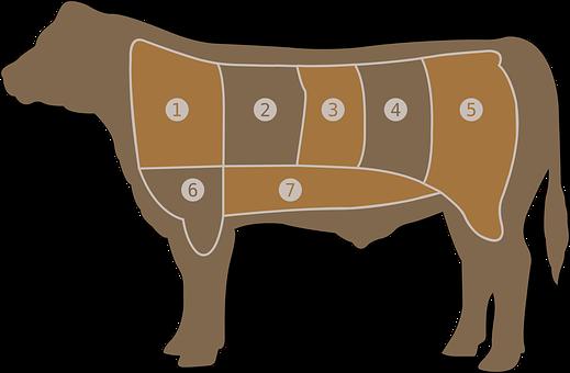 Meat Chart, Beef, Butcher, Cow, Steak, Farm, Part