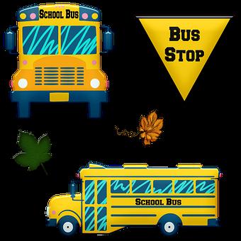 School Bus, Bus Stop, Transport, Stop, Bus, School