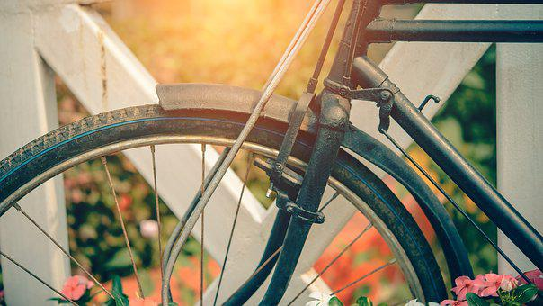 Bicycle, Vintage, Summer, Flower, Garden, Background