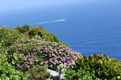 Cape Of Good Hope, Breath-taking, Blue, Green, Ocean