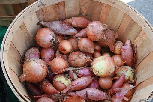 Vegetables, Farmer's Market, Basket, Onions, Ingredient
