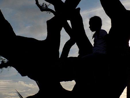 Thinking, Tree, Sunset, Inspiration, Intelligence