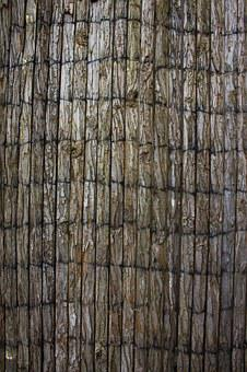 Wood, Structure, Texture, Background, Trunks, Old Wood