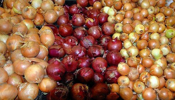 Onions, Background, Market, Vendor, Outdoor Market