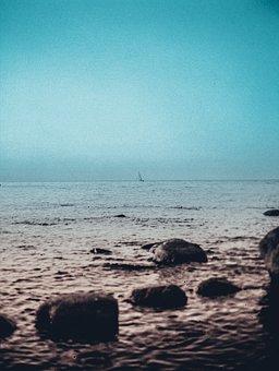 Sea, Roche, Rocks, Beach, Water, Nature