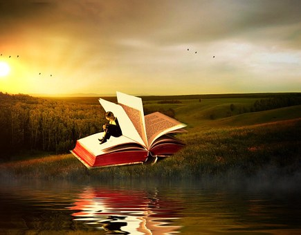 Book, Landscape, Leaves, Nature, Romantic, Shadow Play