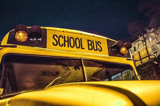 School Bus, Bus, School, School Buses, Automotive, Usa