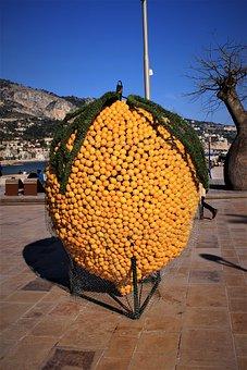 Lemon, Menton Lemon, Festival Of Menton, France, Chin