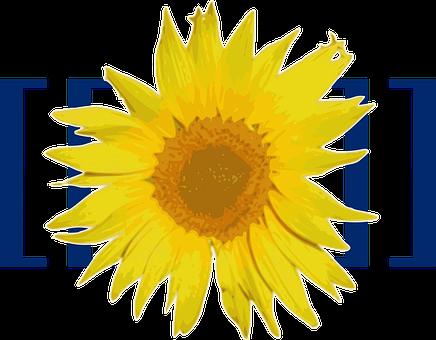 Mediawiki, Logo, Brand, Trademark, Sunflower, Yellow
