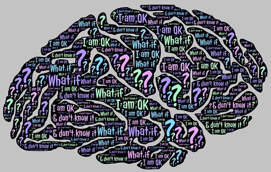 Brain, Mind, Ok, Question, Zen, Inquiry