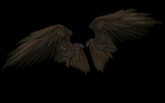 Wings, Wing, Angel, Demon, Fairy, Fly