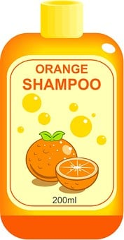 Shampoo, Bottle, Household, Objects
