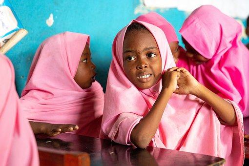 Child, School, Education, Kindergarten, Girl, Science