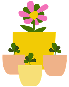 Plant, Sprout, Flower Pot, Pot, Seedling, Grow, Green