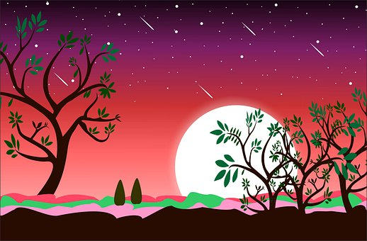 Moon, Night, Trees, Plant, Red Sky In Night, Fantasy