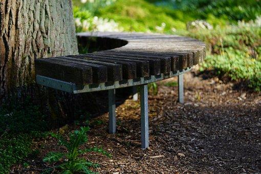 Bench, Wood, Park, Seat, Rest, Bank