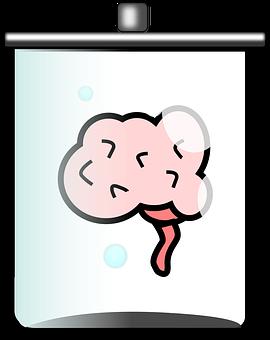 Brain, Jar, Conservation, Mad Scientist, Science, Life