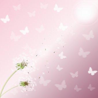 Dandelion Background, Wood, Butterflies