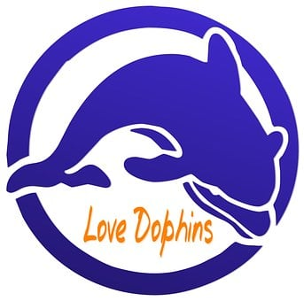 Dolphin, Love, Conservation, Animal, Sea, Ocean, Water