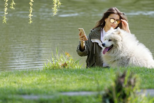 Girl, Person, Female, Young, Dog, White, Pet, Canine