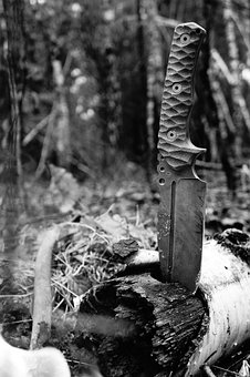 Knife, Forest, Nature, Adventure, Wilderness, Wood