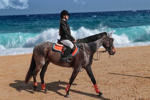 Girl, Sea, Horse, Beach, Summer, Rider, Sport, Race