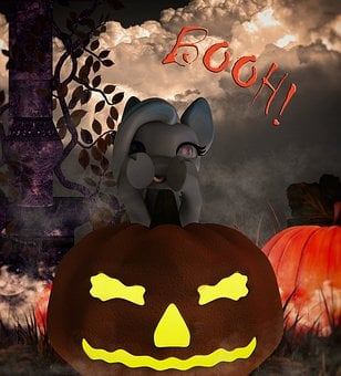 Halloween, Scare, Pony, Sweet, Pumpkin