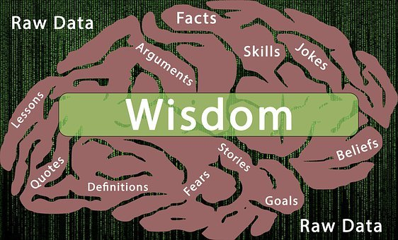 Information Processing, Wisdom, Facts, Arguments